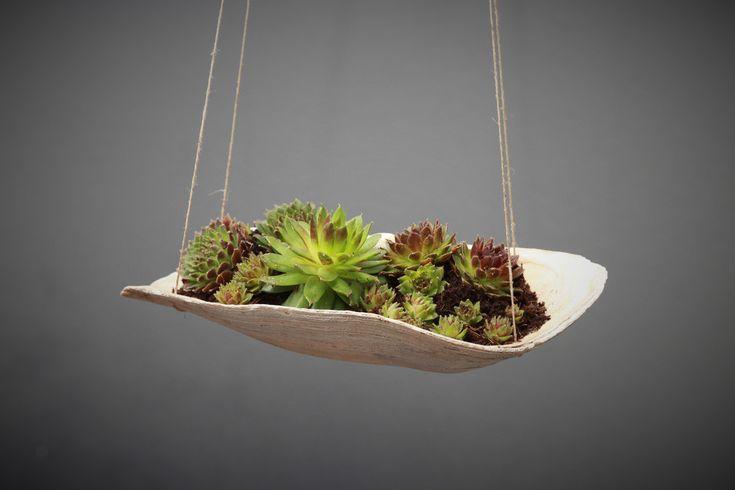 """Deko-Objekte - Muschel zum Bepflanzen """"Schwebender Garten"""" - ein Designerstück von Prinzessin-Schluesselblume bei DaWanda"""