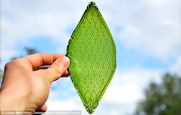 Phát triển thành công lá nhân tạo: cải thiện môi trường, hỗ trợ điều kiện sống ở hành tinh khác - yếu tố: lá nhân tạo => phát minh mới! - áp dụng: phát triển thành công kiến trúc nhà xanh độc đáo