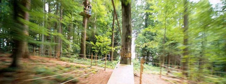 About The Adventure Park | The Adventure Park at Sandy Spring Friends School