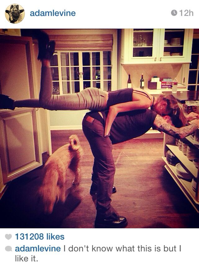 Some fun in the Levine household! Adam Levine and Behati Prinsloo.
