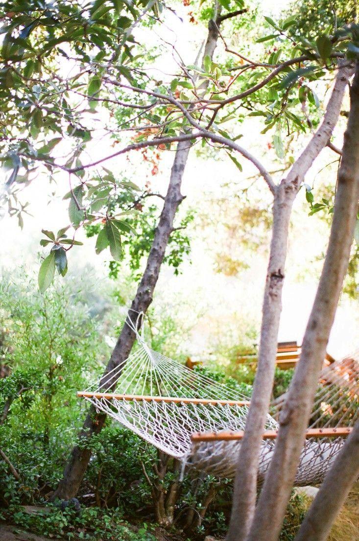 171 best feunekes images on pinterest garden garden ideas and
