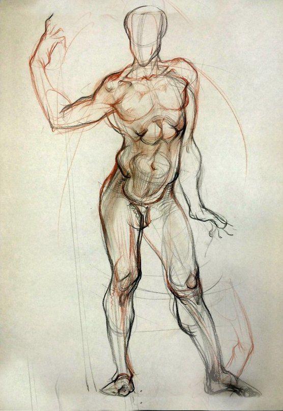 природный анатомия человека картинки рисование известному мнению, вовсе
