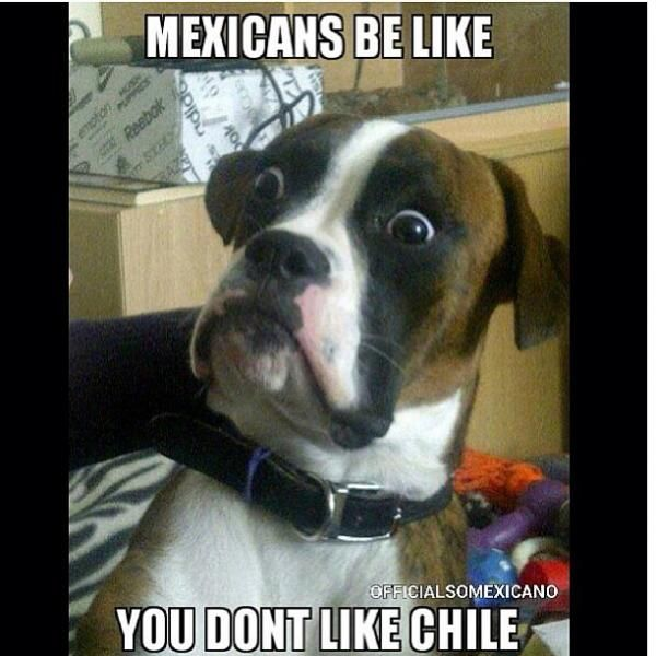 Mexicans Be Like #9482  Just pinned it or the look on the boxers face.   Too funny