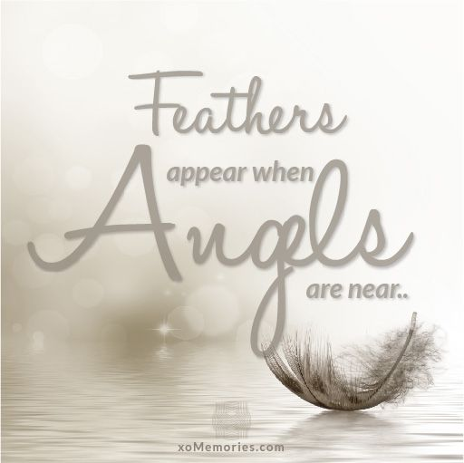 Feather appear when Angels are near... http://xomemories.com/ Memorial Photo Collage Boards #angel #xomemories