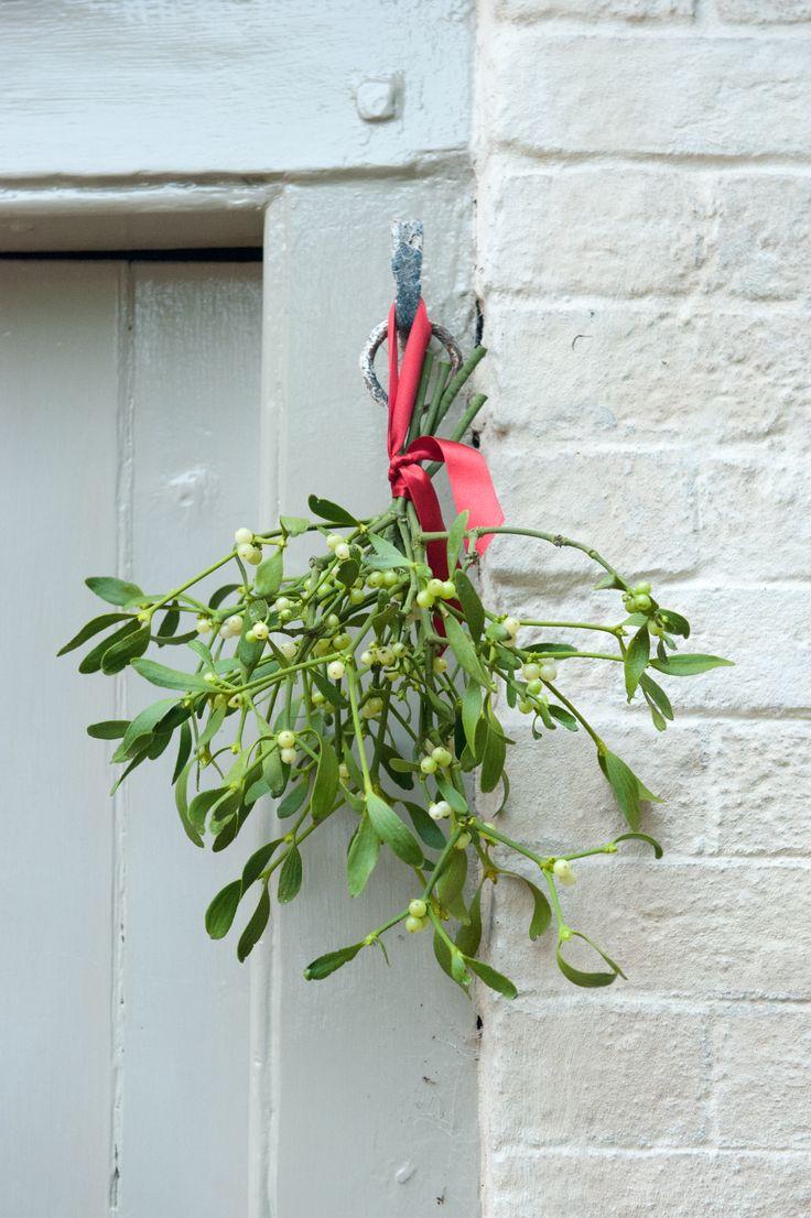 Mistletoe <3