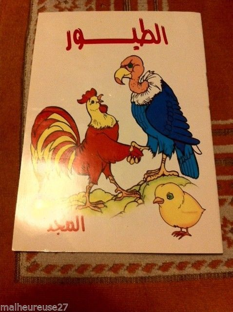 Arabic /English Language book of Aminals Homeschool Muslim Islam  Ramadan Eid #WorkbookStudyGuide