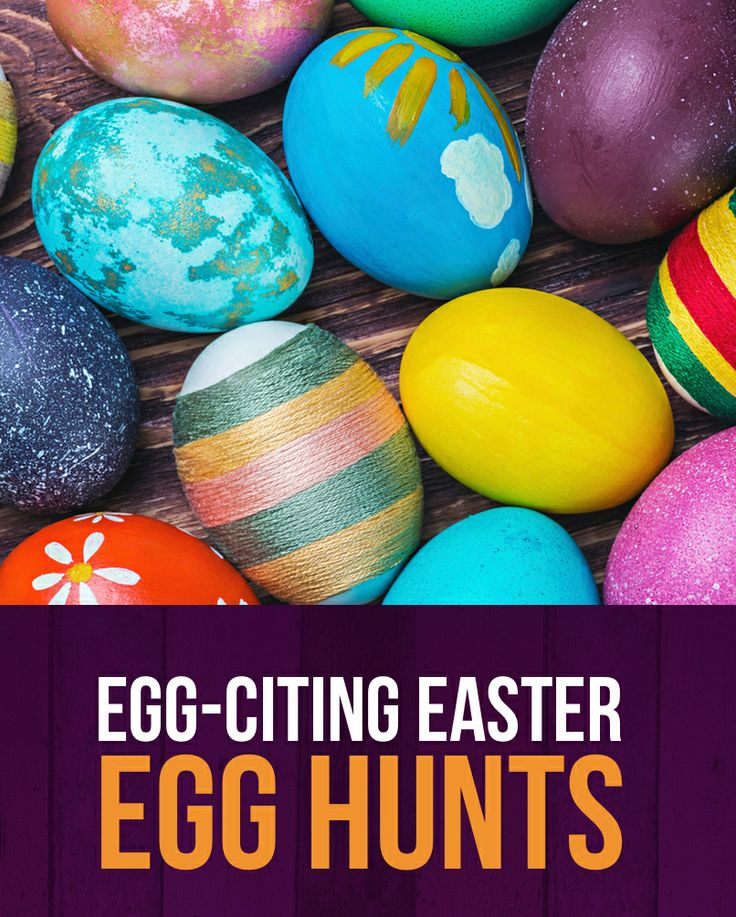 Lots of fun Easter Egg Hunts happening around Cornwall this weekend. Here's the scoop on our favourites: http://www.newquay-hotels.co.uk/the-esplanade-hotel/blog/fun-events/easter-egg-hunts-in-cornwall