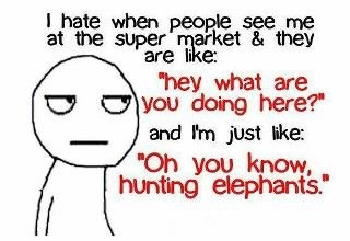 LOL...insert this response at any place where that question just doesn't make sense...lol: Laughing, Quotes, Sotrue, So True, Funny Stuff, Humor, Funnies, Funnystuff, Hunt'S Elephants