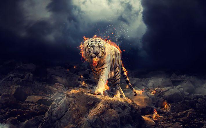 Download wallpapers Panthera tigris tigris, art white tiger, predators, fire, Bengal tiger