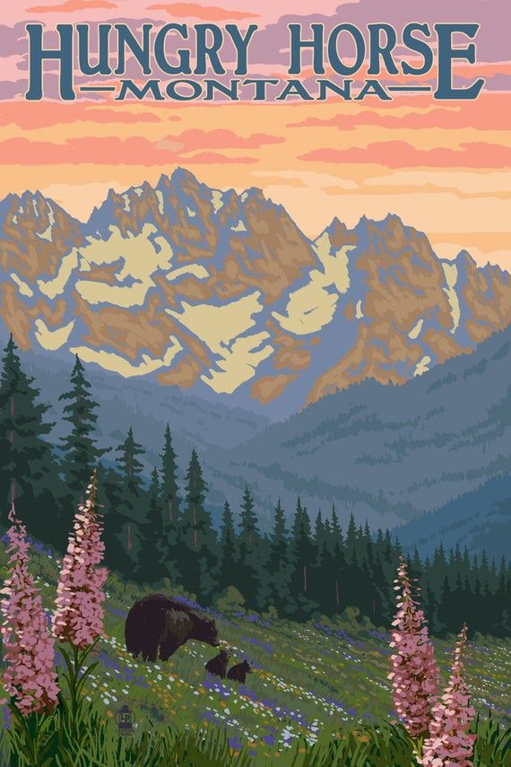 Elk and Mountains Estes Park Colorado 16x24 Gallery Wrapped Stretched Canvas