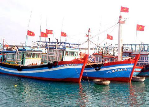 Đánh bắt cá ở Tuần Châu