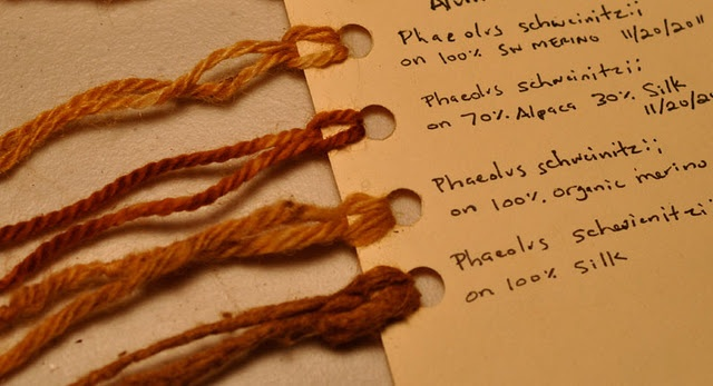 Samples of mushroom-dyed yarn; Adrienne Rodriguez, www.dyegarden.com