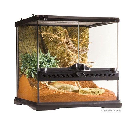 Terrario Cristal Mini EXOTERRA Los Terrarios de Exo Terra son un hogar ideal para reptiles y anfibios y han sido diseñados por herpetólogos europeos.