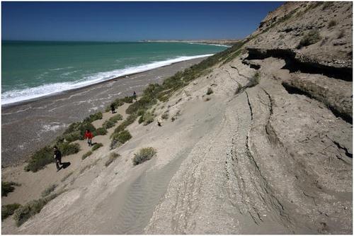 Argentina Travel Photography: Patagonia Puerto Madryn Peninsula Valdes Punta Delgada.144 by Hans Hendriksen
