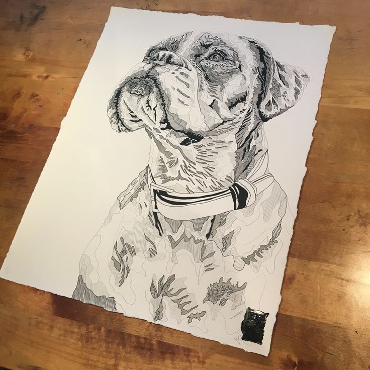 'Betty' by #CharlotteHawleyCreative #Lots #Dogs #Drawing