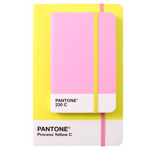 pantone notebooks = Hell Yeah!! @Krystal Ford @Emma Zangs Bulmer @Bri Turpin emery / designlovefest
