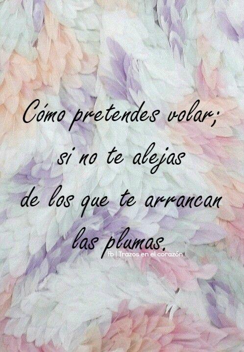 Como pretendes volar; si no te alejas de los que te arrancan las plumas.  @trazosenelcorazon