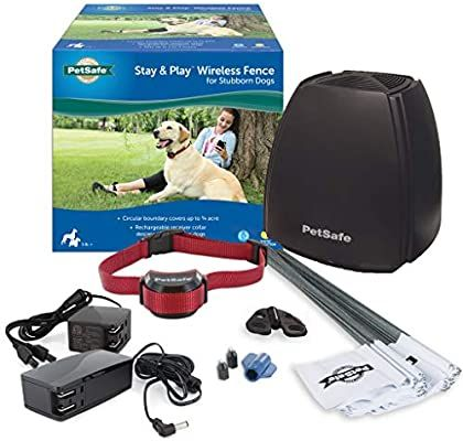 Amazon Com Petsafe Stay Play Wireless Fence For Stubborn Dogs