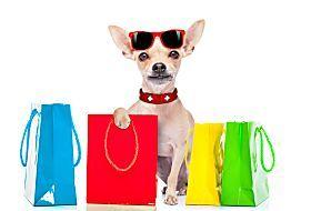 Confira quais são as mega pet shops de Curitiba