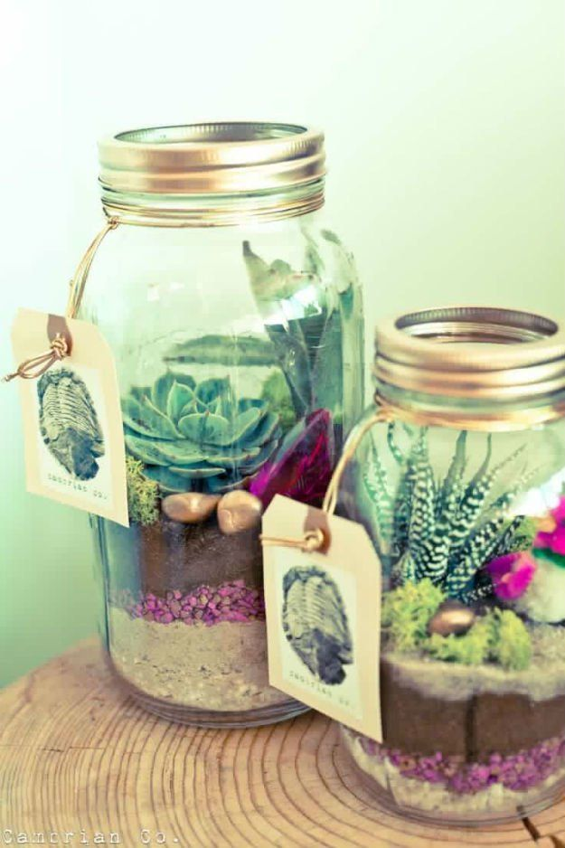 Click here in plant jar for more sick plants