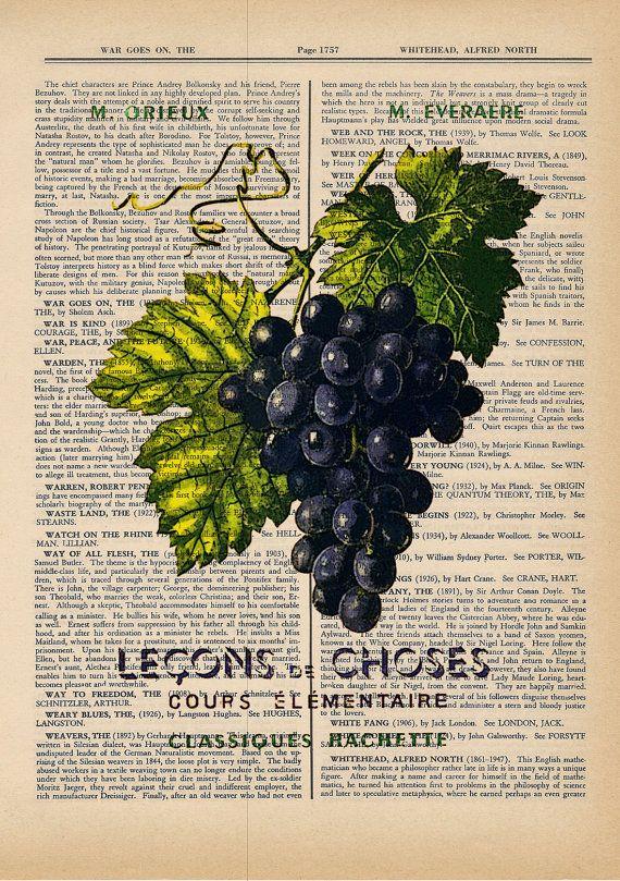 Grapes Image