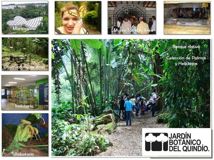 M s de 25 ideas incre bles sobre el jardin botanico solo for Actividades en el jardin botanico