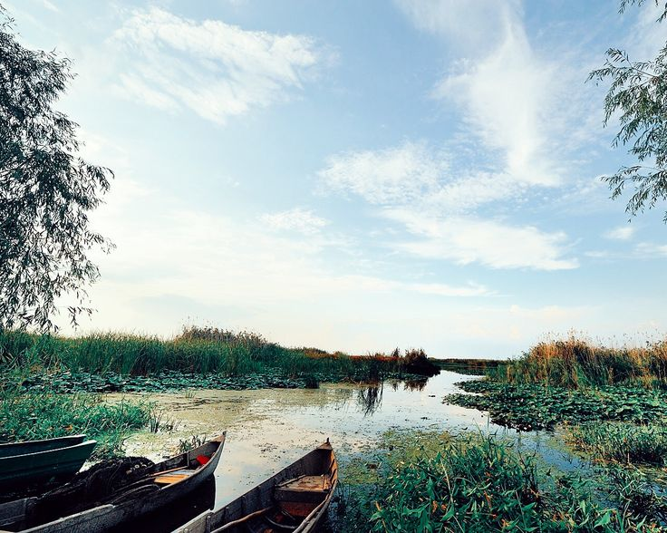 Awesome weekend getaway: the Danube Delta ⛵️  | OurCoterie