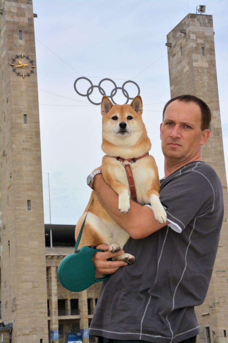 Olimpic doge :)
