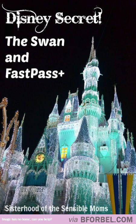 A Magical, Beautiful Disney Secret…
