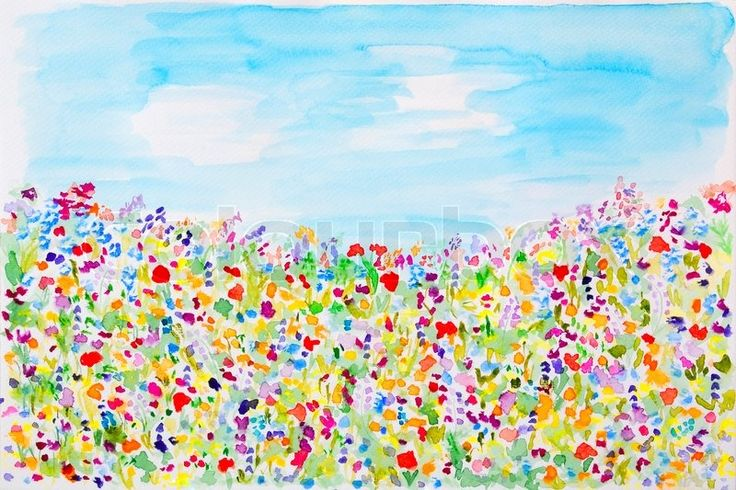 Wild summer flowers watercolor hand-painted | Stock Photo | Colourbox