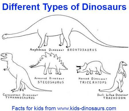 Different types of dinosaurs - dinosaur names can be divided into different kinds - species, what they ate, and by when they lived.