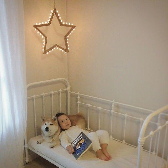 Un peu avant la sieste... Pompon: Philo, tu me lis une histoire ? Philo: Oui, j'ai exactement ce qu'il te faut... #etoilelumineuse #starlightmaker #bonnenuitpompon #irisdemouy #ecoledesloisirs #lepetitatelierdeparis #shibainu