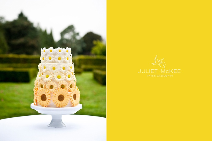 Loving This Daisy Cake Food And Drinks Pinterest