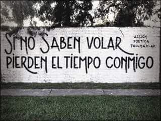 Si no saben volar pierden el tiempo conmigo #Acción Poética Tucumán #accion