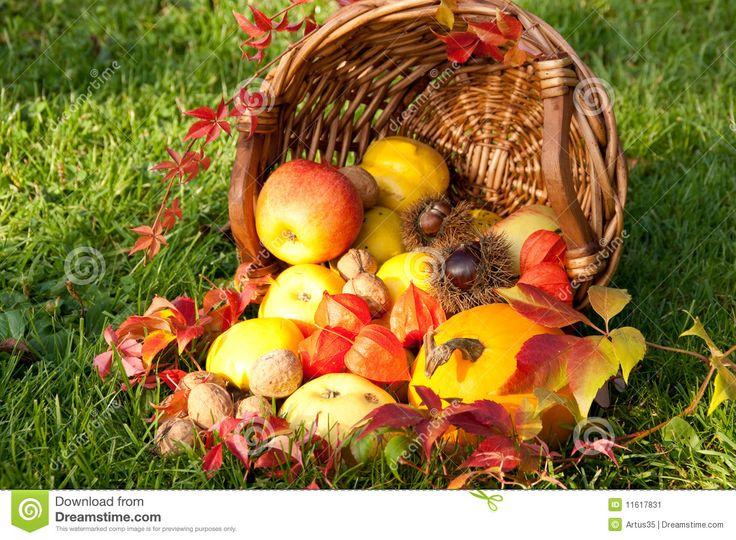 poczatek jesieni-obrazki - Szukaj w Google