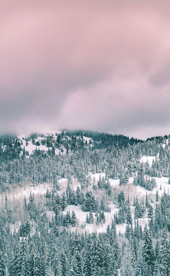 Winter Iphone Wallpaper Iphone Wallpaper Winter Snow Iphone Wallpaper Iphone 11 In 2020 Fine Art Landscape Photography Iphone Wallpaper Winter Fine Art Landscape