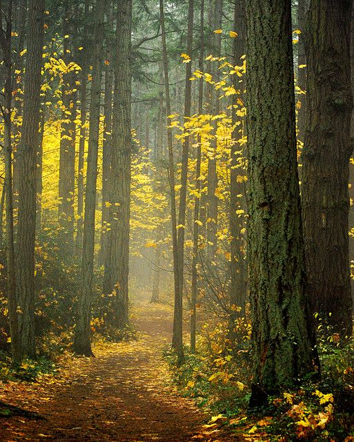 """It is a lovely place to spend a day! 