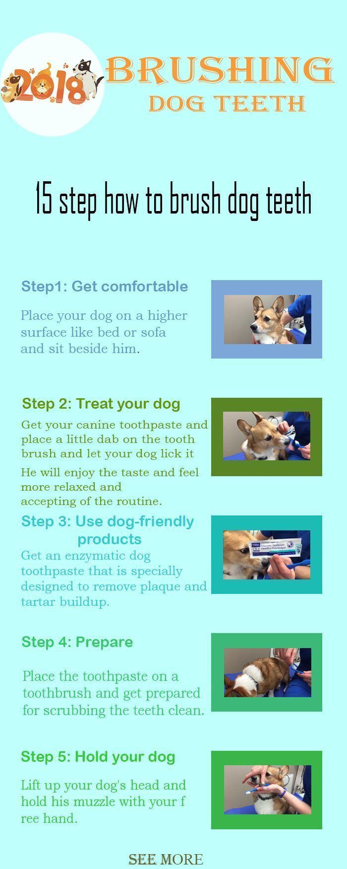 Doggroomingathome Kaufmannspuppy Dental Brush Teeth Home