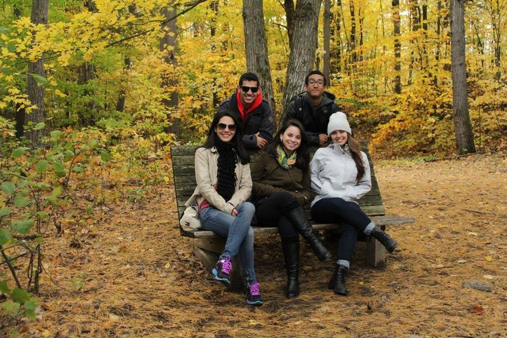 Fun Fall Activities to Try While at ESL School in Canada