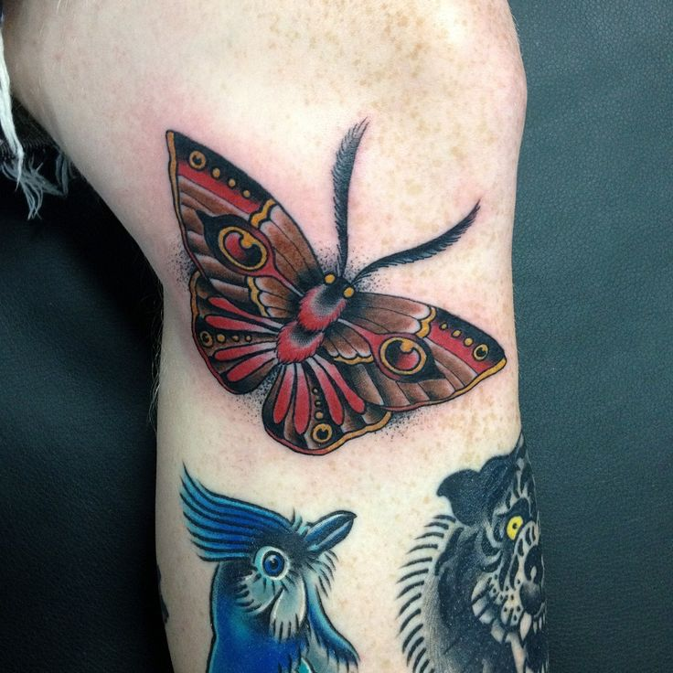 25 best ideas about traditional moth tattoo on pinterest moth tattoo traditional black. Black Bedroom Furniture Sets. Home Design Ideas