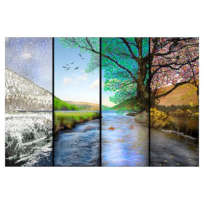 Beautiful landscape photograph that shows the change of seasons. Winter, Spring, Summer and Fall. Show your love for nature and our beautiful earth     http://www.cafepress.com/+wall_art_small_canvas,573522395#./+wall_art_small_poster%2C573522395?&_suid=135783229934004949960935634768
