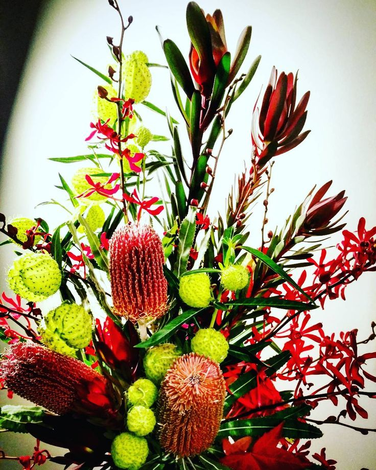 See this Instagram photo by @thedoctorsflowers • 7 likes