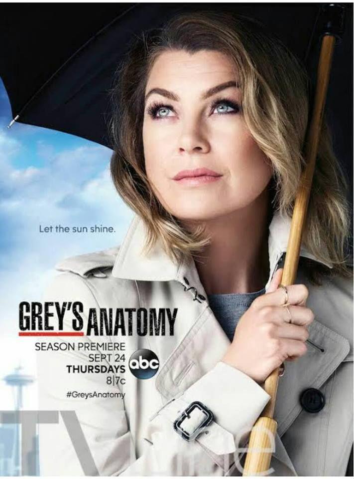 Grey's Anatomy Season 12 poster. Meredith Grey (Ellen Pompeo).