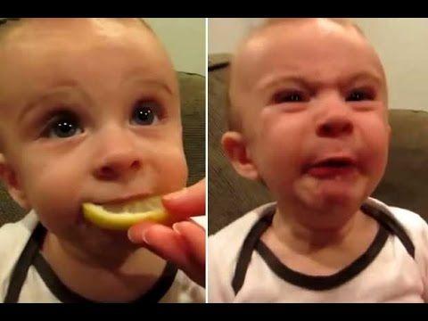 Babies Eating Lemons Compilation 2015 -Funny Plox-