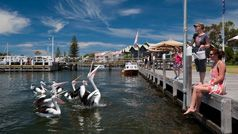 Metung, Gippsland, Victoria, Australia