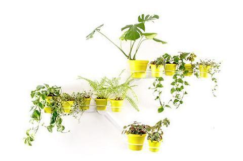 Kreep LITE Planter
