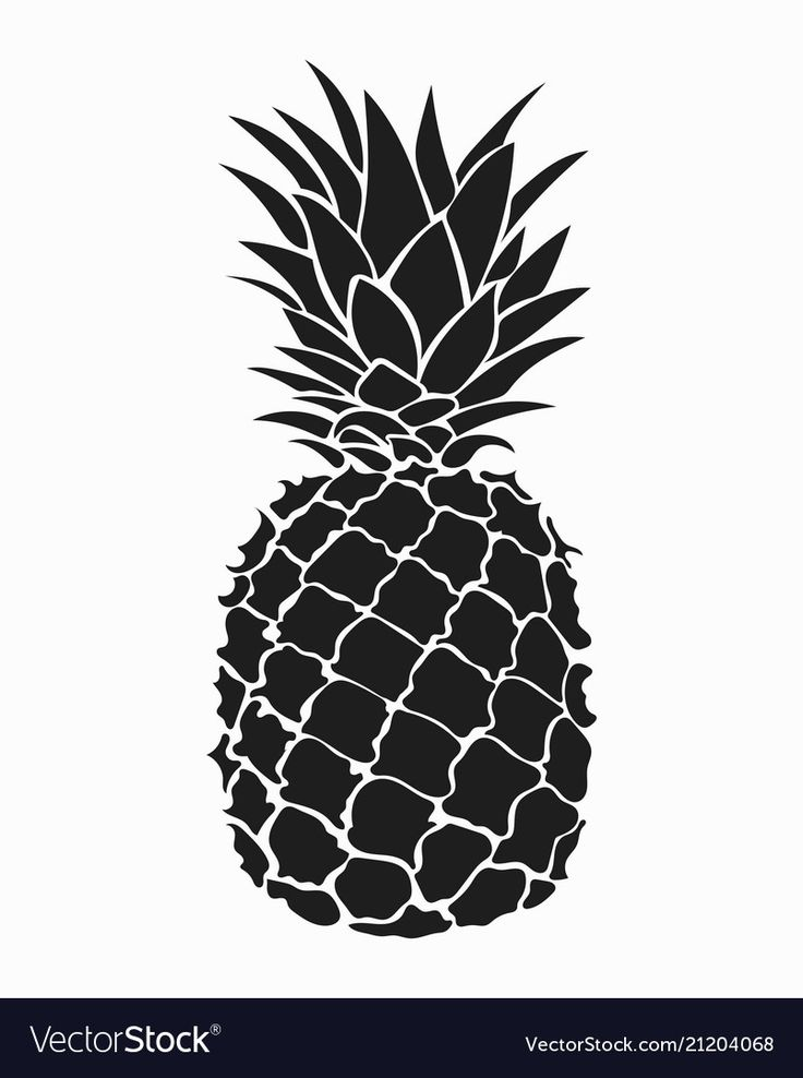 Pineapple black and white print vector image on (With