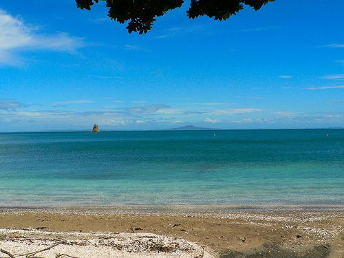 Matakatia Beach, Whangaparaoa Peninsula, Rodney, New Zealand