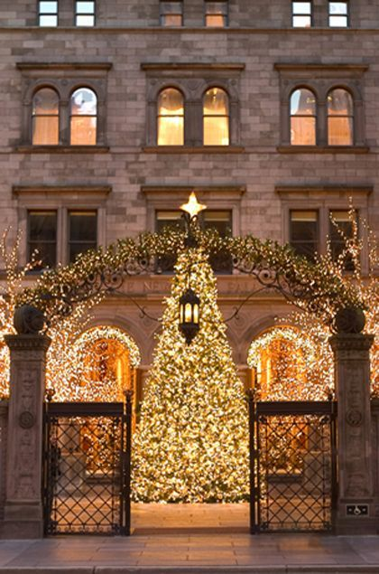 Noël, lumières en ville - The New York Palace - New York City Hote Yorls - Newk City, US