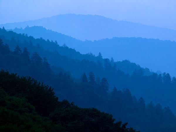 The fact invariably stated about Great Smoky is this: It is the nation's busiest park, drawing more than nine million visitors a year, twice the number of any other national park.